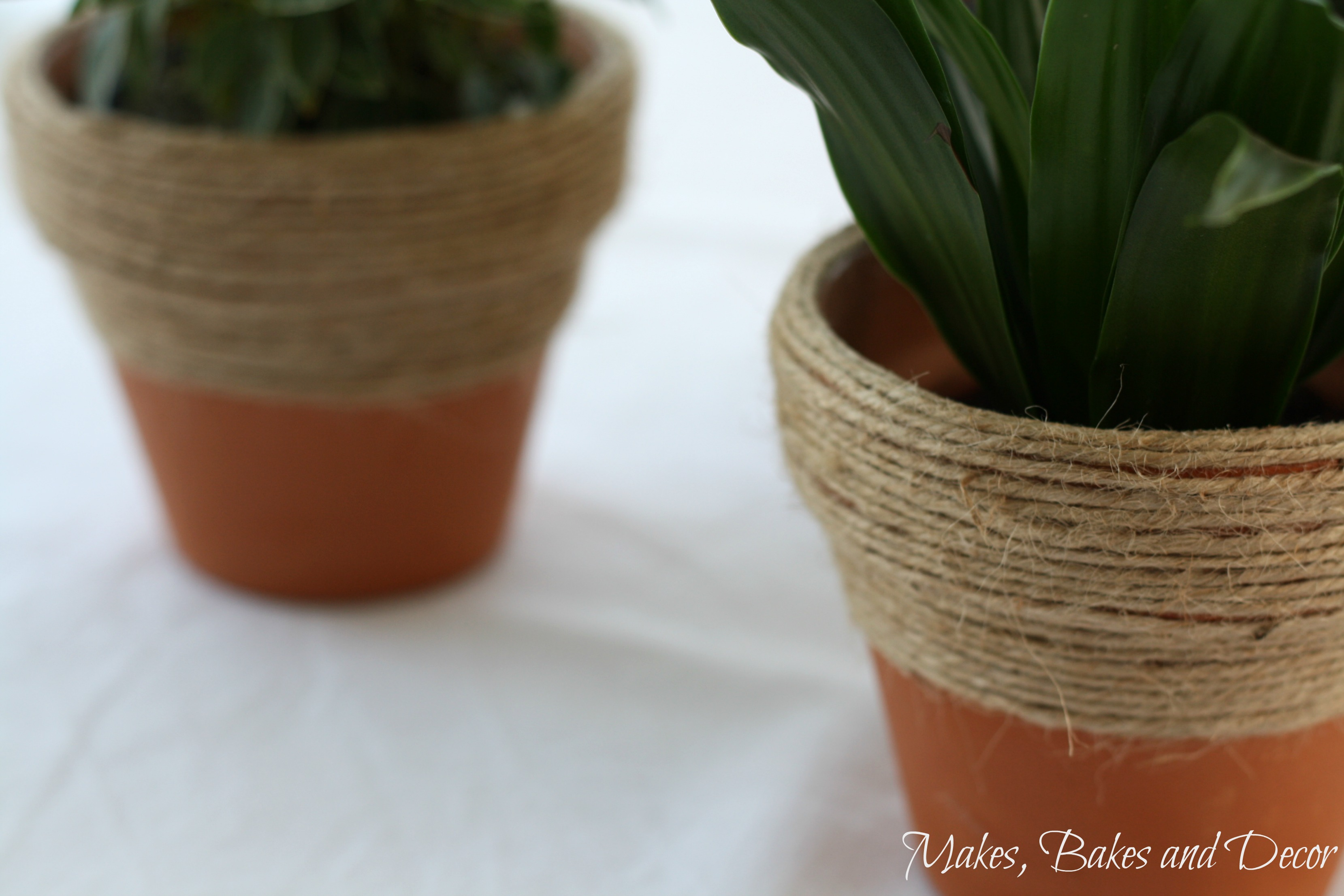 twine wrapped plant pots